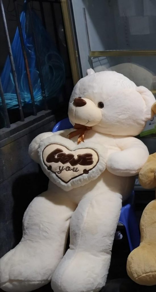 teddy bear gift vietnam